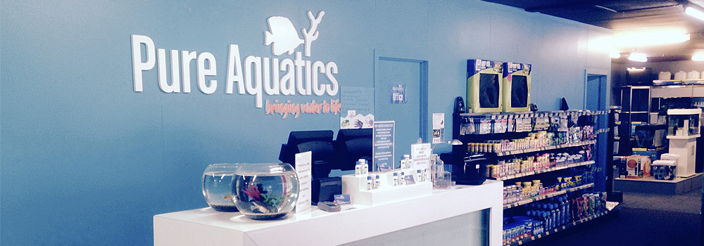 Pure-Aquatics-Desk